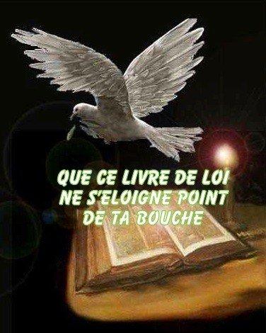 Chemin de vie selon mon choix/Ou/chemin de croix en suivant Jésus-Christ Notre Roi/ 02a7d8c8